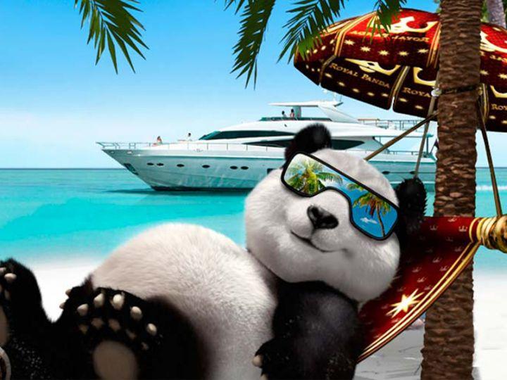 Royal-Panda-pic
